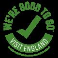 good-to-go-england-1-120_120